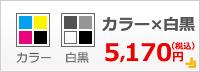 カラー×白黒