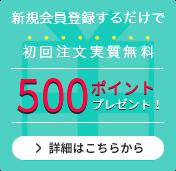 会員登録ですぐに使える500ポイントをプレゼント!