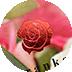 デコレーション加工|Rose