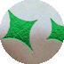 箔押し加工|グリーンメタリック